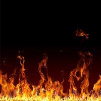 2003 Пламя