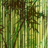 2013 Бамбу зеленый