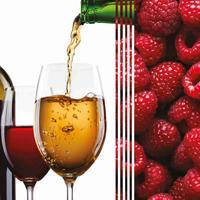 3064 Виноградня 2