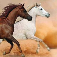 3067 Донские лошади